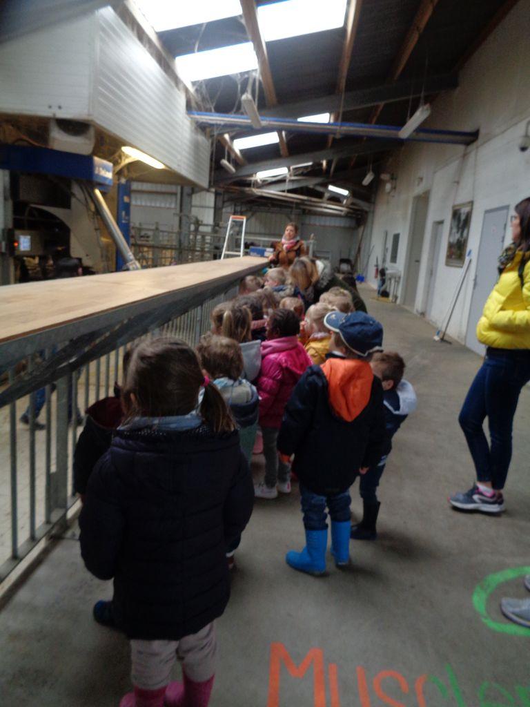 A la ferme pédagogique